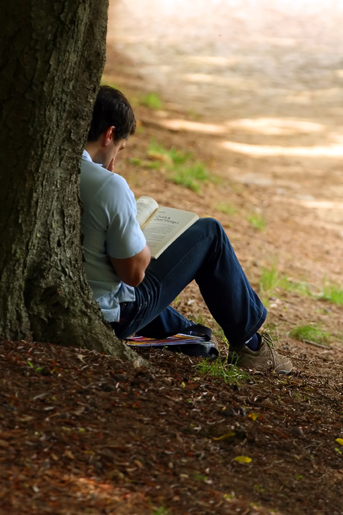 Suggested Reading for GMAT RC   Crack the Verbal Section on GMAT